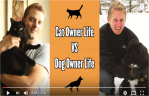 Dog Owner vs Cat Owner Video
